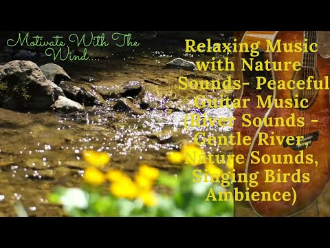 Relaxing Music with Nature  Sounds- Peaceful Guitar Music -River Sounds - Singing Birds Ambience)