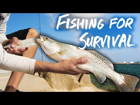 Thumbnail: SURVIVAL FISHING one week eating ONLY the fish I catch