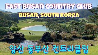[Busan Korea] 단풍이 아름다운 가을 아침 라…