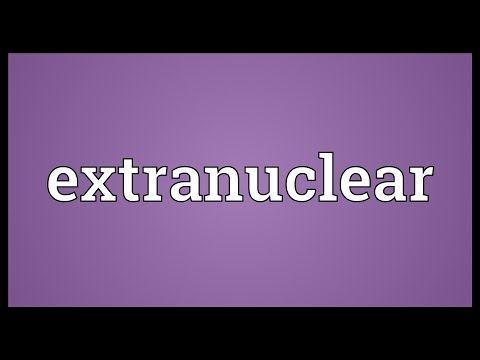 Header of extranuclear