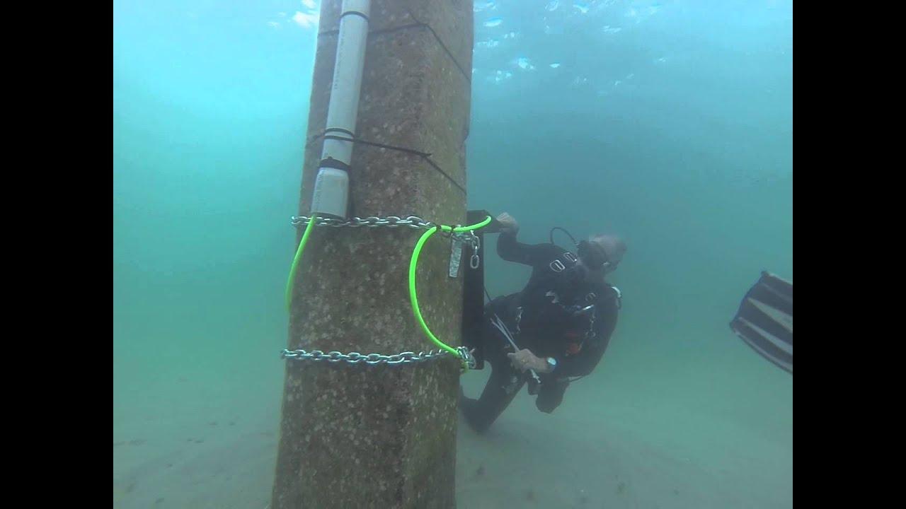 Deerfield Beach Underwater Webcam