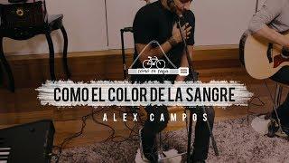 Alex Campos -
