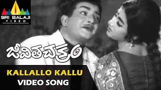 Jeevitha Chakram Video Songs | Kallallo Kallupetti Video Song | NTR, Vanisri | Sri Balaji Video