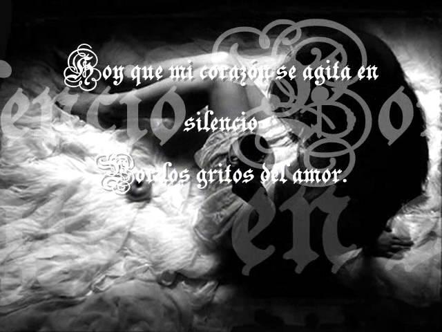 los-tipitos-silencio-alejandra-rodriguez