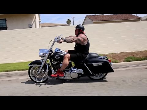 CRUISING ON HARLEY'S - BEAUTIFUL PIT - KILLIN SHOULDERS -  GLOBAL FITNESS