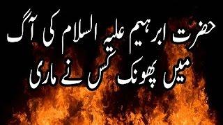 Firqa Wariat Ki Aag Khatam Karo By Maulana Tariq Jameel Sahab 2016 Islamic Urdu Bayan