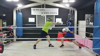 40대(청) vs 30대(녹) 직장인 라이트 스파링