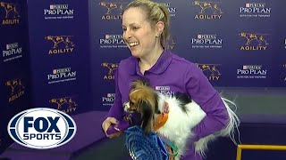 "Gabby captures the 8"" division title at the 2019 WKC Masters Agility 