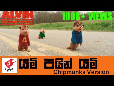 Yami Pain Yami Chipmunks Cover - Wasthi Productions | වස්ති යමි පයින් යමි Chipmunks