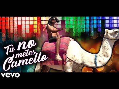 TÚ NO METES CAMELLO (Parodia Tu No Metes Cabra)