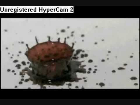Lecture 4 Types Of Blood Spatter