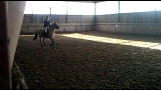 Srebrna odznaka jeździecka - skoki. Bonanza.