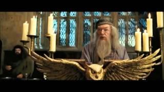Гарри Поттер и охуевшая шляпа
