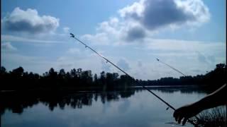 Рыбалка на реке Десна. Fishing on the river Desna(Отличная рыбалка на Десне. В основном клевала густера , улов 4кг., 2016-07-03T18:59:41.000Z)