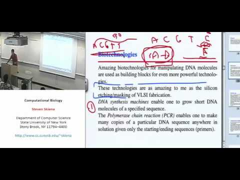 Lecture 2 - Biology for Computer Scientists