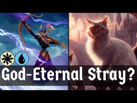 Repeat GOD-ETERNAL STRAY?!?! Azorius God-Eternal Duplicator | MTG