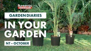 Gardening in October | Northern Territory | Bunnings Garden Diary