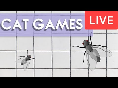 CAT GAMES 🐱 24/7 LIVE Entertainment For Cats! (Catching Flies)