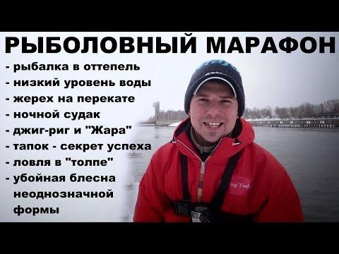 Блесна с Ali КОСИТ ЖЕРЕХА! Рыболовный марафон.