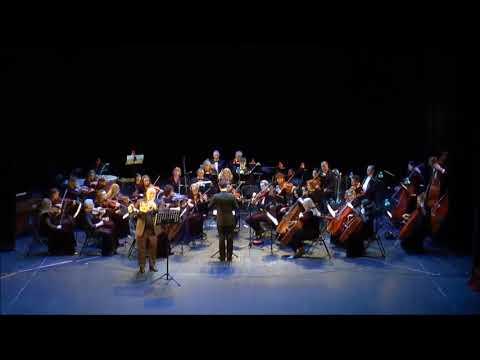 W.A. Mozart 4 Hornkonzert k 495 2-3 M Alberto Cappiello Belarusan Festival Orchestra