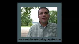 Retriever Training Forum: Chris Atkinson