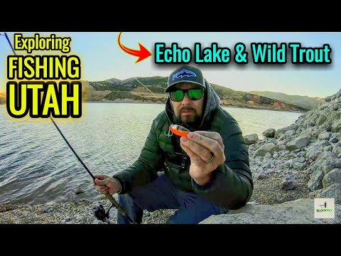 hot-spinner-for-trout-fishing-echo-lake-utah!-black-fly-#012-rainbow-&-brown-trout-spinner-fishing!