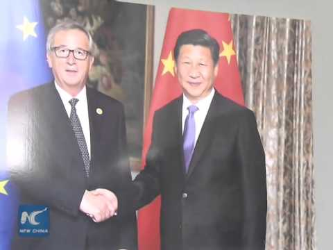 Xinhua to serve as bridge between Chinese, EU peoples: president