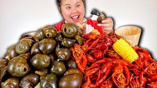 GIANT MONSTER SEA SNAILS + CRAWFISH SEAFOOD BOIL MUKBANG 먹방 EATING SHOW!
