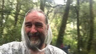 Wanaka to Franz Josef 2019