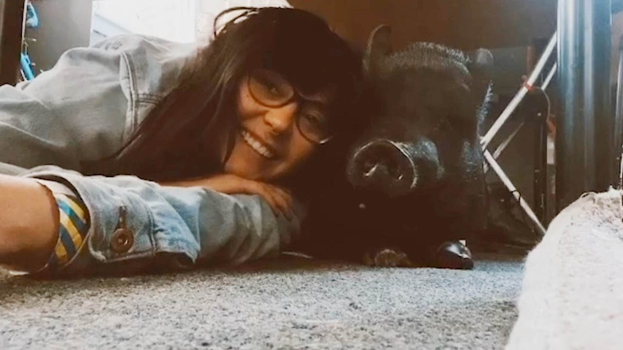 Woman Has Adorable Friendship With Her Pet Pig