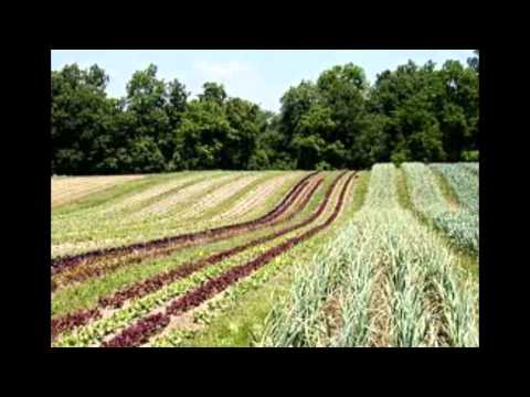 FULL VIDEO - Canadian Aerial Applicators Educational Video