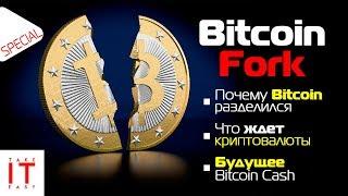 Bitcoin Fork: почему Биткоин раскололся, что ждет Bitcoin Cash и криптовалюты