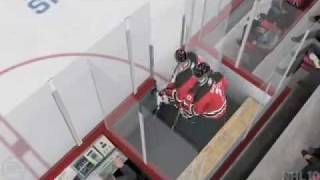 xbox 360 NHL 10 - bugs part 1