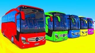 Cars 3D Animation Big Bus with Songs Fun Car Transportation - Vehicles Video