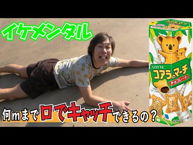 【イケメンタル】第一回コアラのマーチ遠投口キャッチ