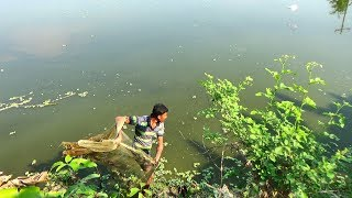 Net Fishing | Catching Fish With Cast Net | Net Fishing in the village (Part-347)