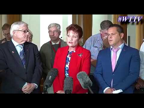 ONE NATION MEDIA CONFERENCE | The faces of Australia's banking scandal