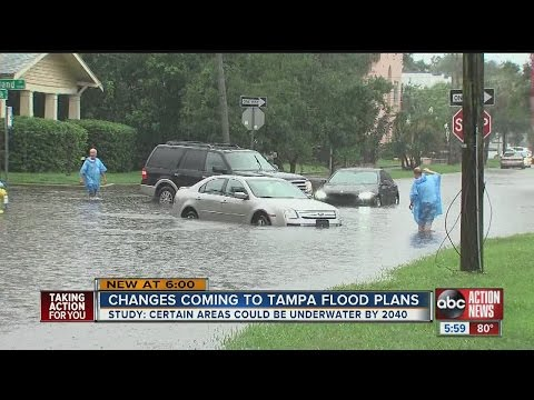 Study: Some Tampa neighborhoods could be under water by 2040