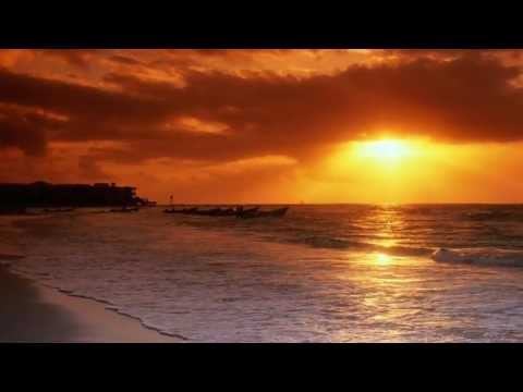 The Unique Matter - Sunset Beach (Original Mix)