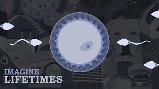 Imagine Lifetimes - Early Edition Trailer