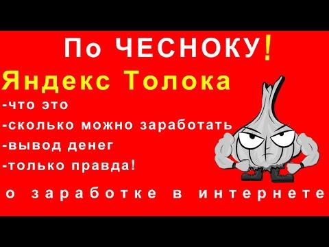 Как заработать в интернете на Яндекс Толока. По чесноку о заработке