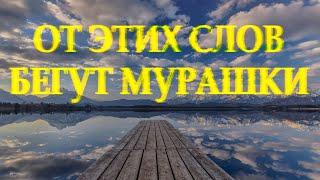 Очень душевный стих \А знаешь жизнь загадочная штука\ Дмитрий Кудрявцев Читает Леонид Юдин