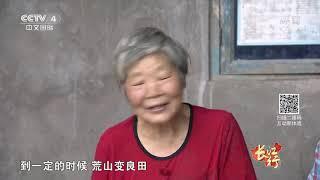 《远方的家》 20191011 长江行(46) 一湾江水润万州| CCTV中文国际
