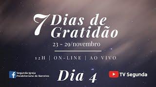 7 Dias de Gratidão - dia 4