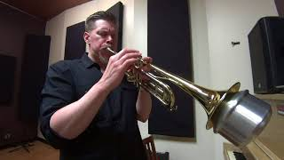 Hi-Tek - Music For Life (feat. J Dilla, Nas, Common & Busta Rhymes) Trumpet Cover