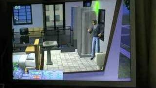 The Sims 2 Pets Gameplay