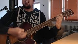 Mr. Hurley und die Pulveraffen - Ich Kanone dich nicht leben (Akustik Live-Cover)