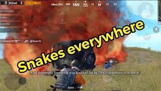Is this a snake hunter training now.. | PUBG Mobile