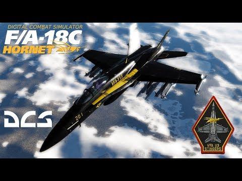 DCS: F/A-18C Hornet VFA-113 Stingers