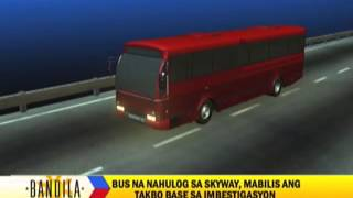 What caused passenger bus to plunge from Skyway?